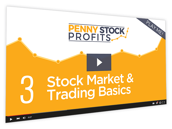 Penny Stock Profits Course Thumbnail for Module 3 - Stock Market & Trading Basics